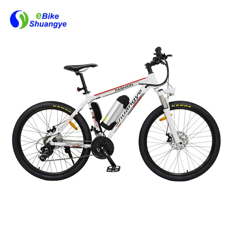 electric bike (5)