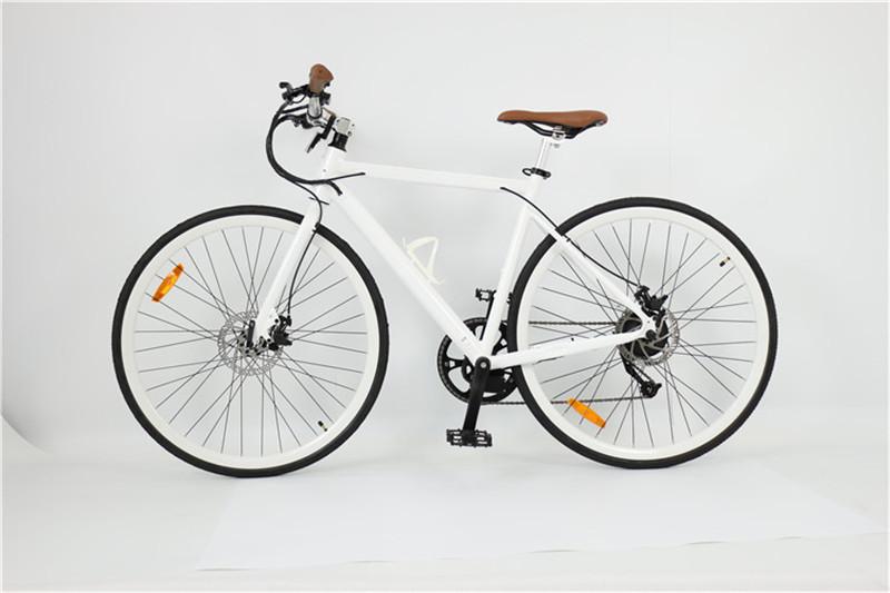 road ebike (4)