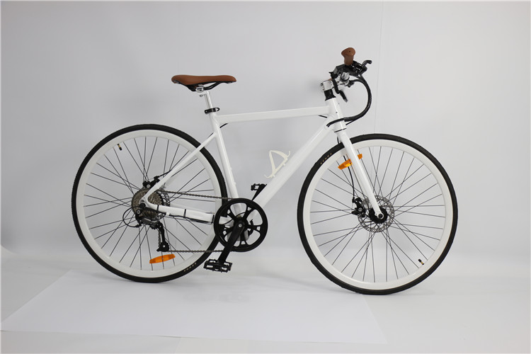 road electric bike (1)
