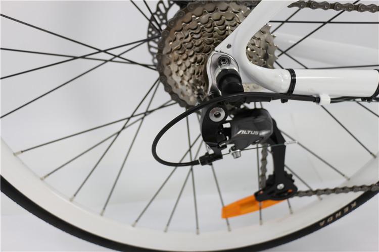 road electric bike (2)