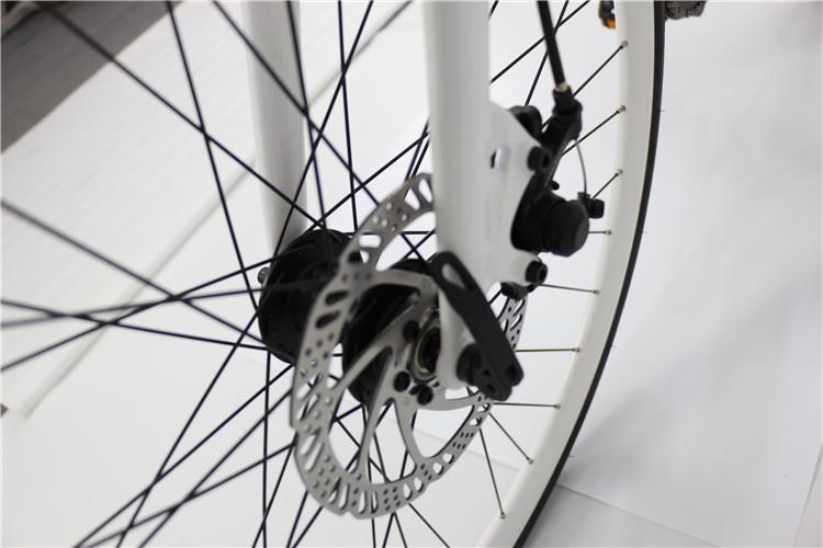 road electric bike (4)