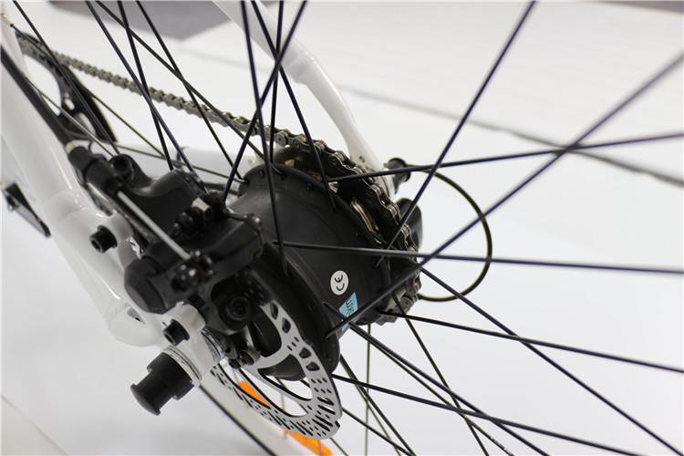 road electric bike (5)