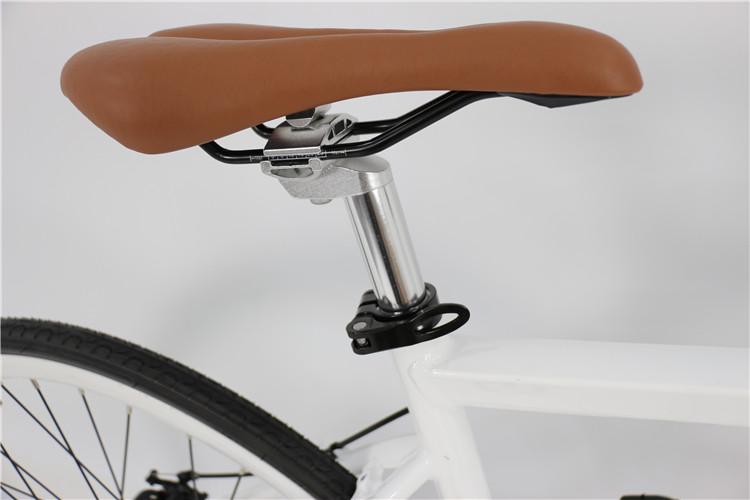 road electric bike (6)