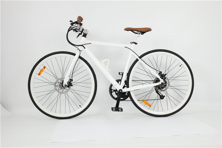 road electric bike (7)