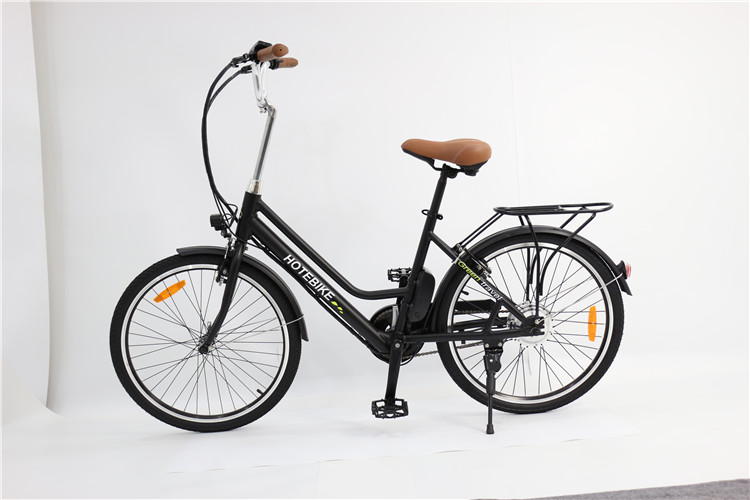 city electric bike (1)