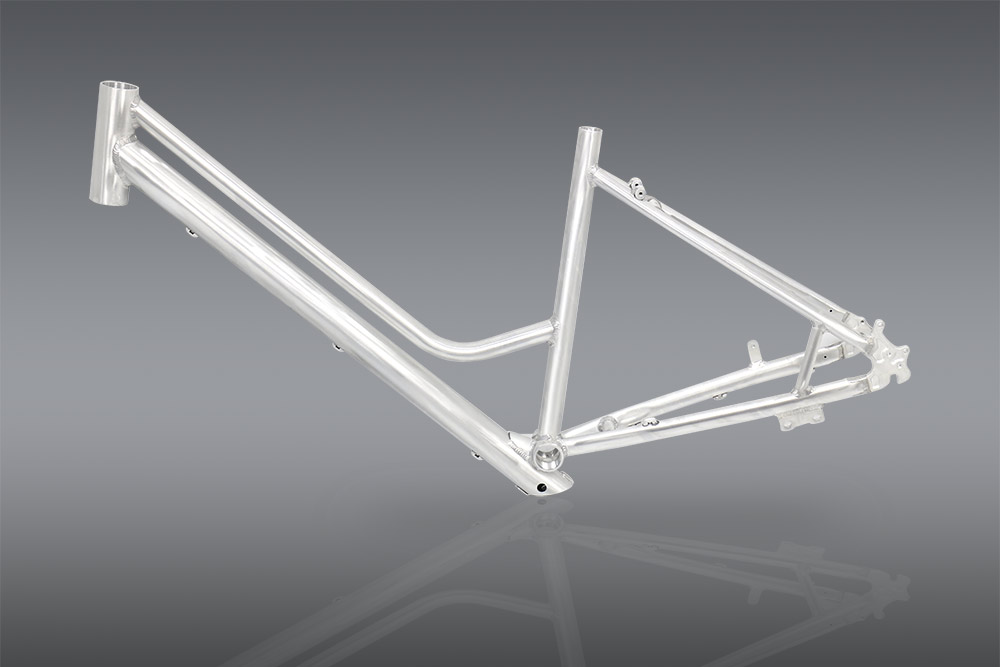 electric bicycle frame