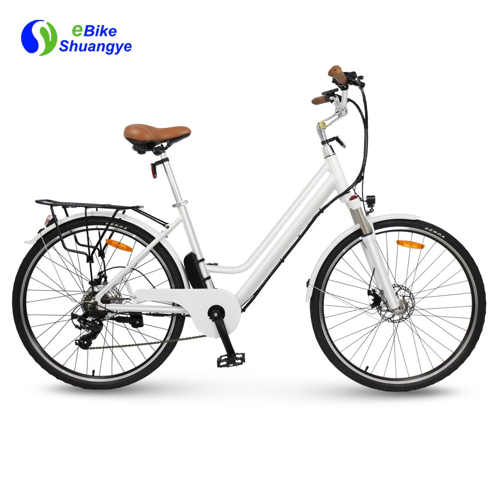 The best ebike with 36V 250W Motor A3AL28