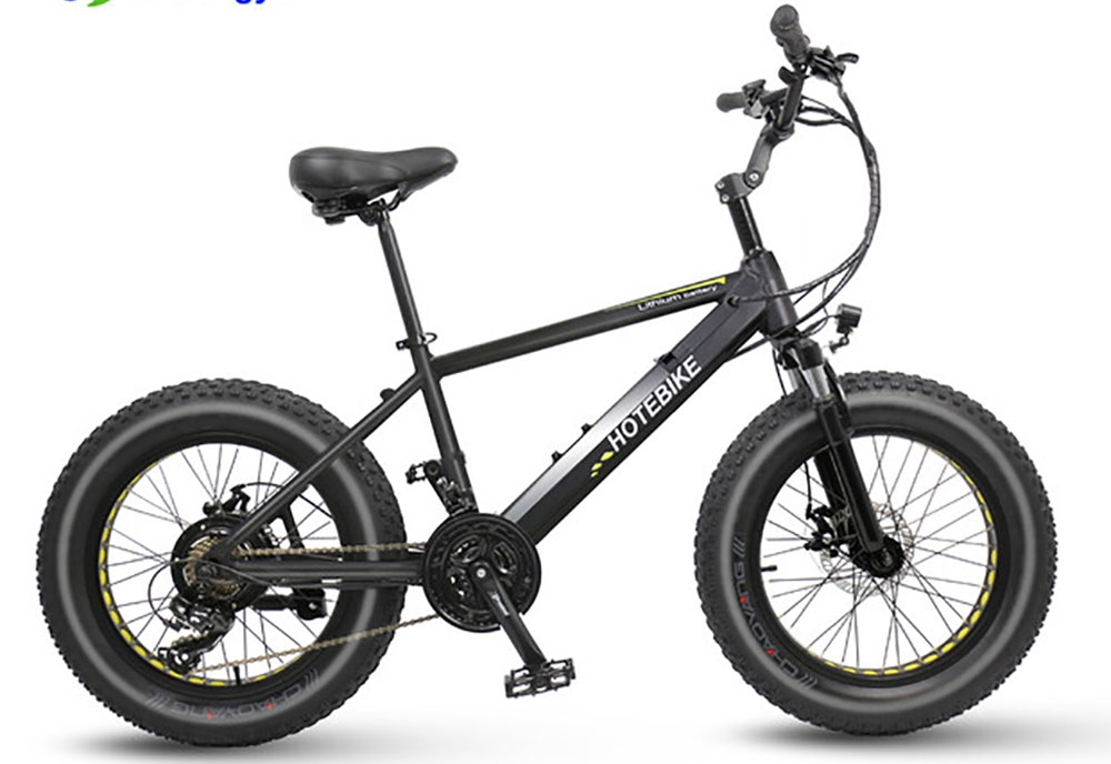 fat tire electric bicycle (10)