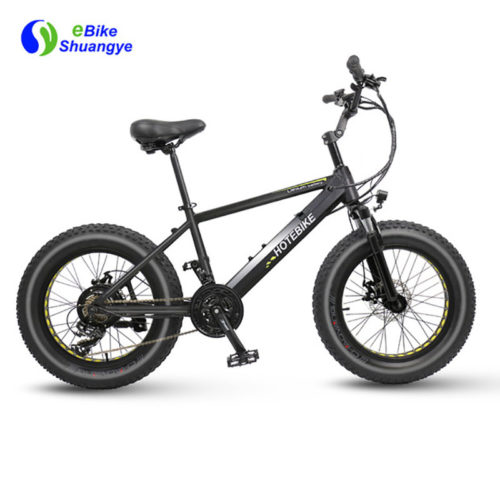 20 inch fat tire electric bicycle