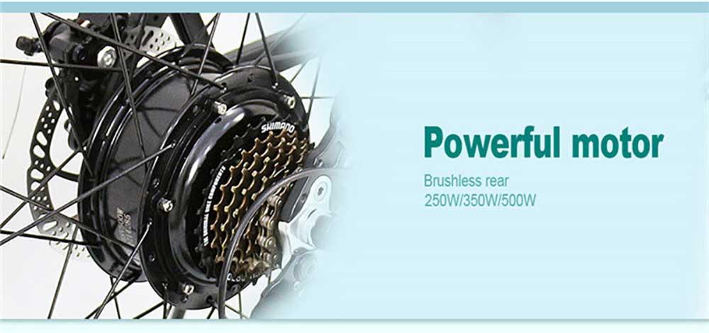 batteries bicycle (6)