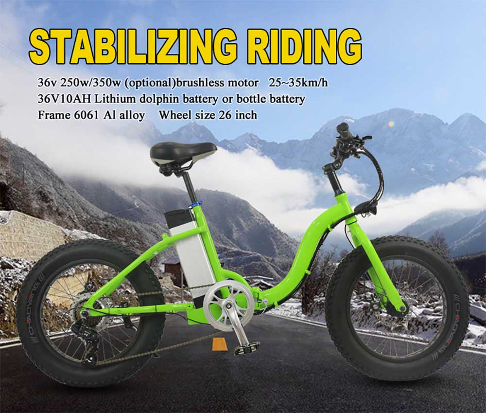 best folding electric bike (2)