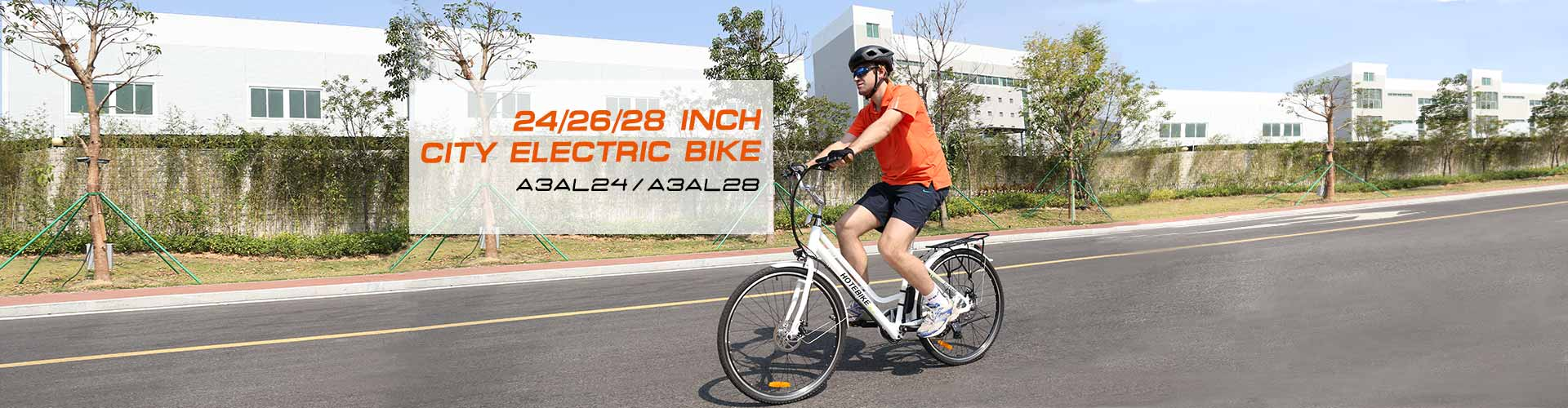 city ​​electric bike
