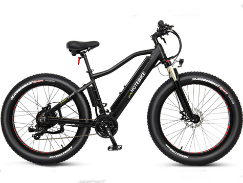 Upgrade 750W/1000W fat tire electric bike
