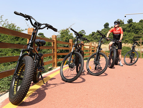 The best benefits of electric bikes for adults