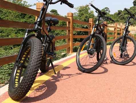 What kind of electric fat tire bike should I choose?