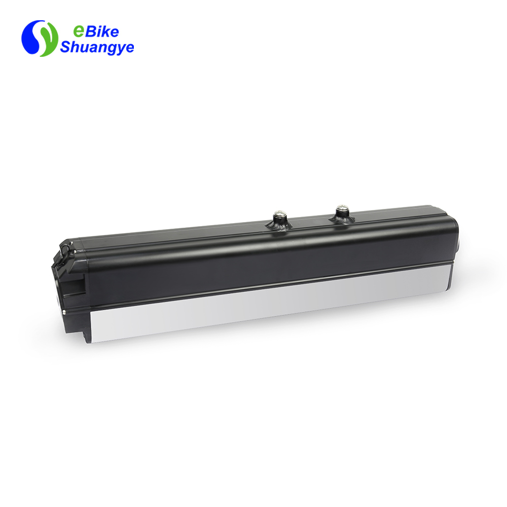 48V removable electric bike battery H2-350
