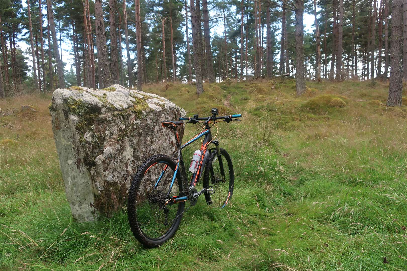 A standing stone beside the singletrack trail.