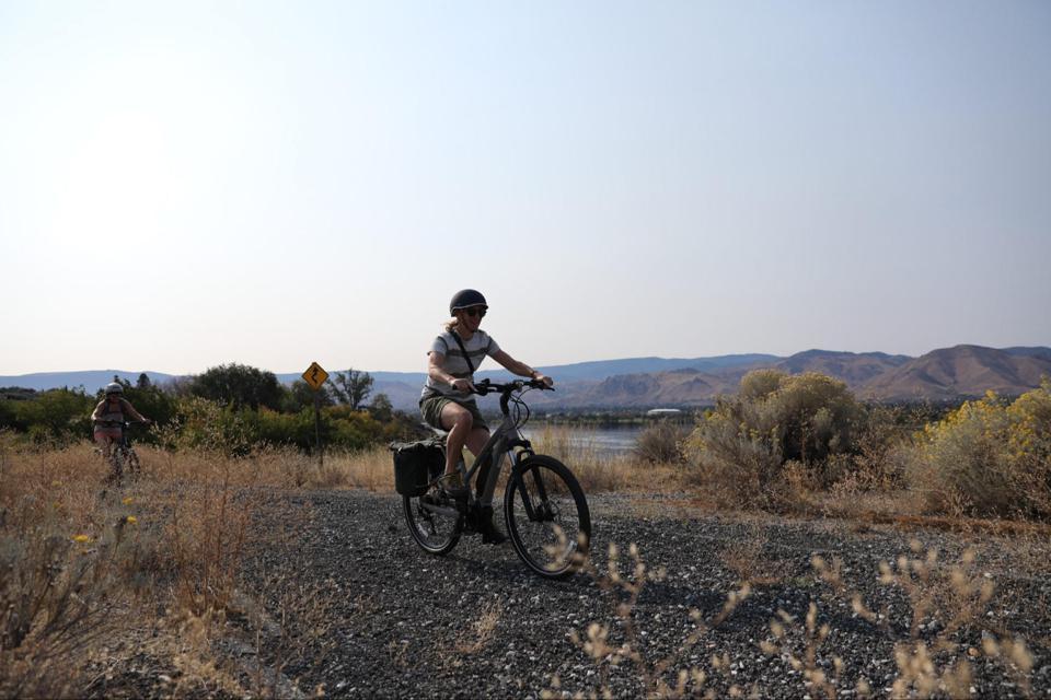 REI Co-op Cycles e-bike