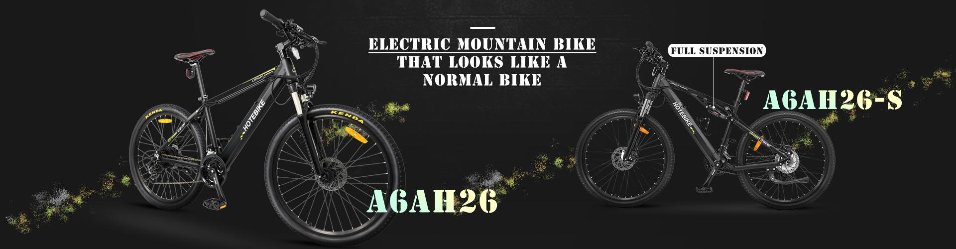 mountain ebike