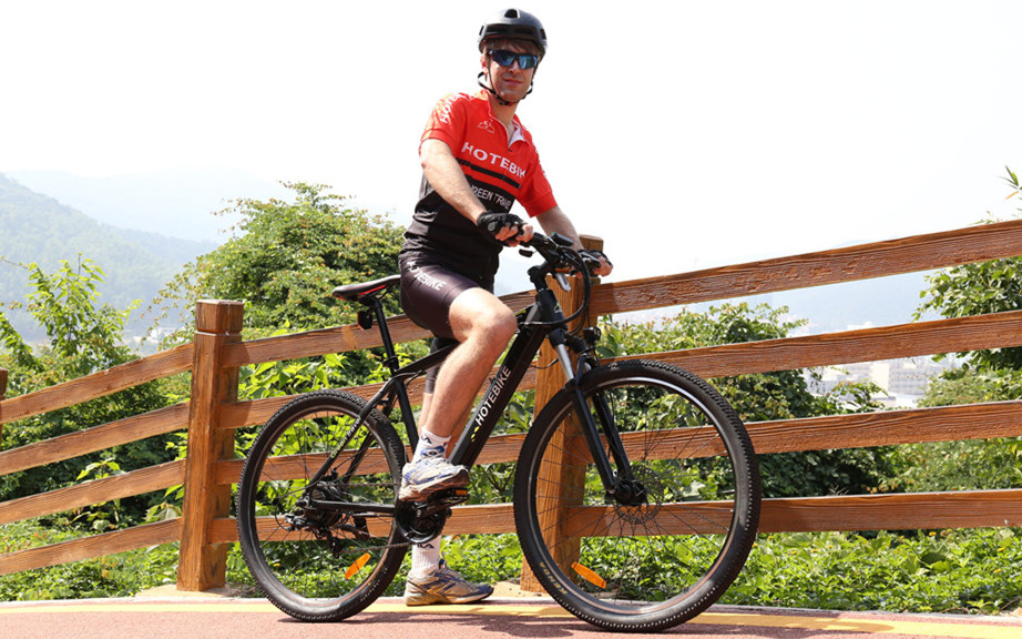 What is the cheapest mountain electric bike