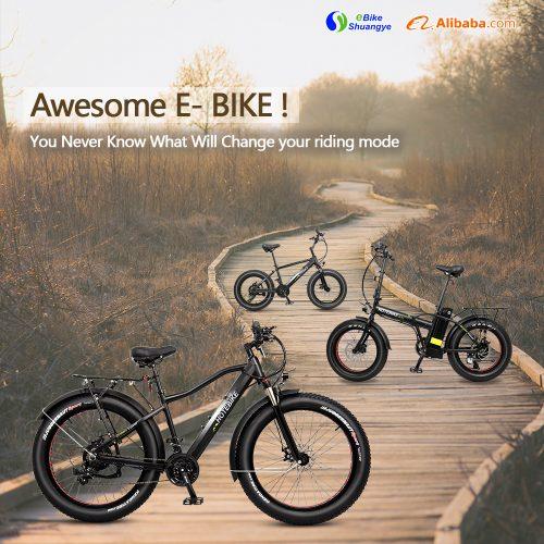 Best Cheap E-Bikes You Can Buy in Shuangye