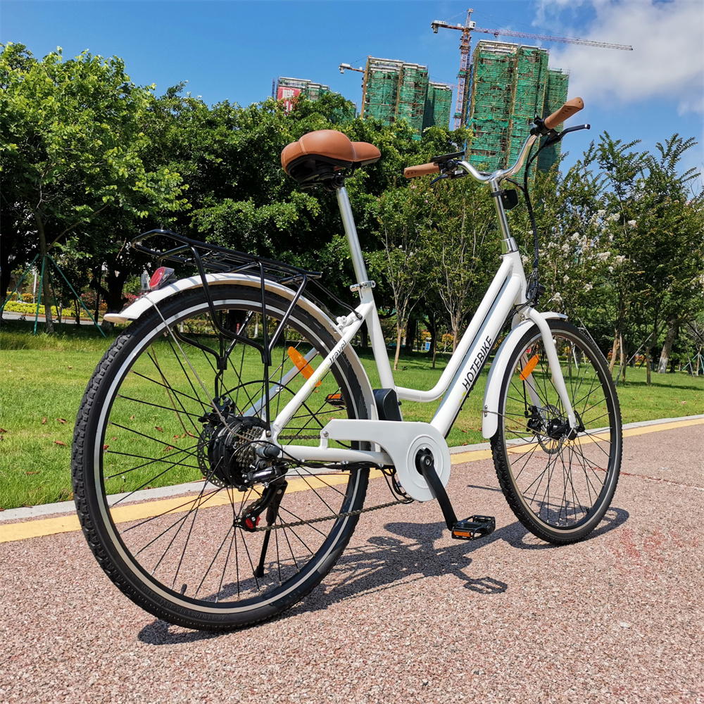 Maintenance methods of electric motor for bicycle